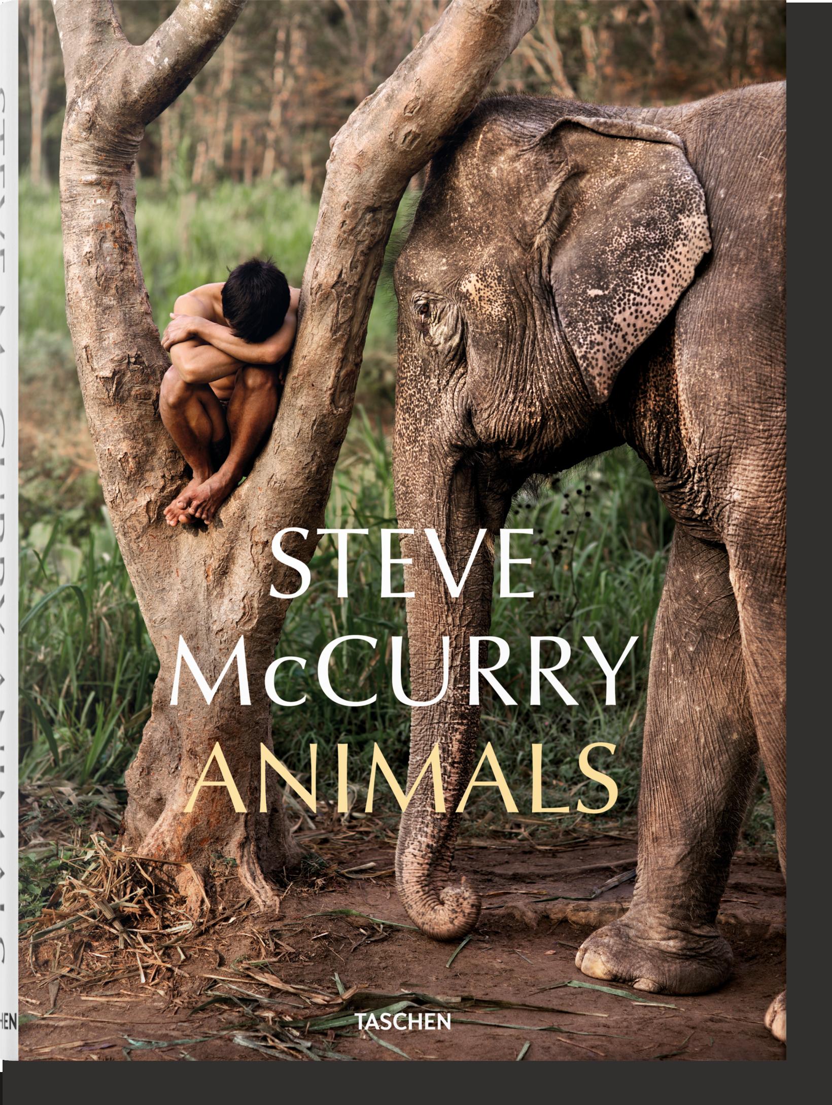 Steve McCurry. Animals - McCurry Steve