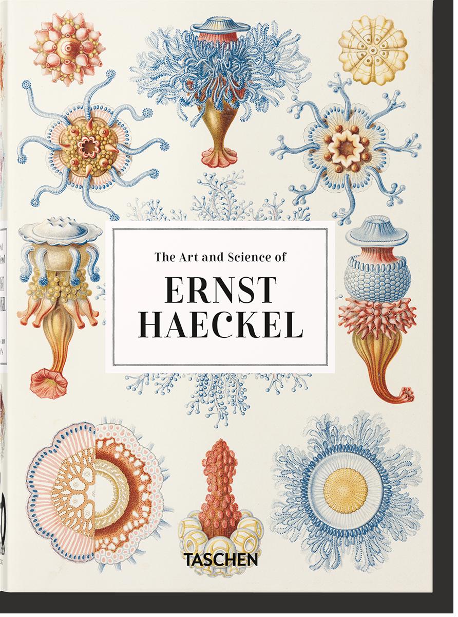 Ernst Haeckel - Willmann Rainer