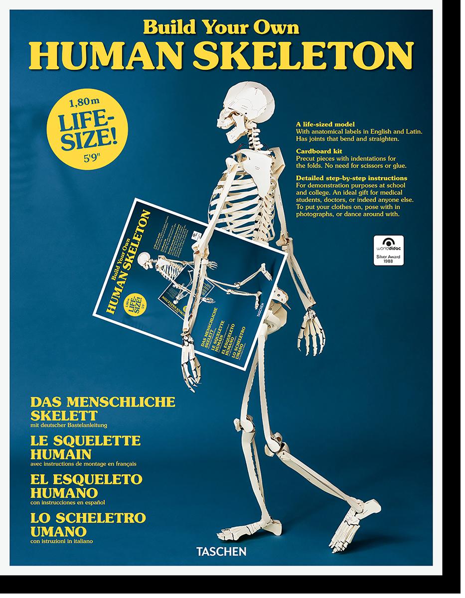Build Your Own Human Skeleton – Life Size! - Autores Varios
