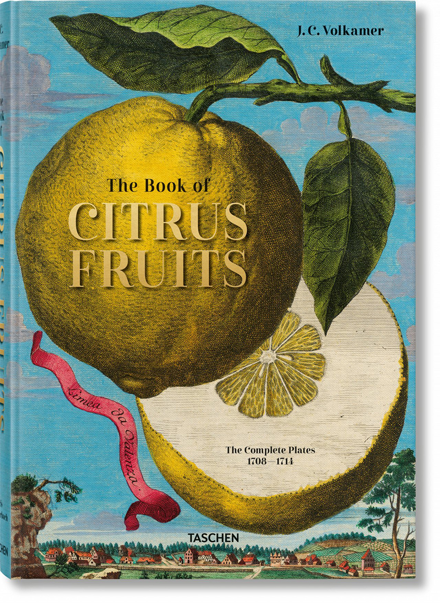 The Book of Citrus Fruits - Lauterbach Iris